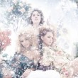 Fashion shoot of young beautiful nymphs in the spring forest — ストック写真 #21489045