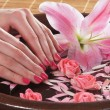 Beautiful female hands with flowers and petals in spa style - Стоковая фотография