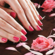 Beautiful female hands with flowers and petals — Stock Photo #23995953