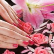 Beautiful female hands with flowers and petals - Stock Photo