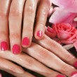 Beautiful female hands with flowers and petals — Stock Photo #23996157