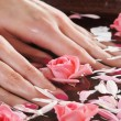 Beautiful female hands with flowers and petals — Stock Photo #23996173