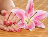 красивые женские руки с цветами и лепестки — Стоковое фото