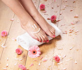 Sexy female legs and plenty of different petals and flowers — Stock Photo