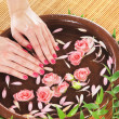 Stock Photo: Beautiful female hands with flowers and petals in spstyle
