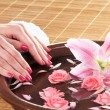 Stock Photo: Beautiful female hands with flowers and petals in spa style