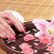 Beautiful female hands with flowers and petals in spa style — Foto de Stock