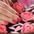 Beautiful female hands with flowers and petals in spa style - Stock Photo