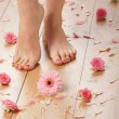 Spcompositions of sexy female legs and plenty of different petals and flowers — Stock Photo #27027459