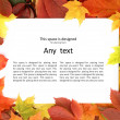 Colorful autumn frame — Foto de Stock