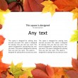 Colorful autumn frame — Stockfoto