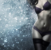 A sexy brunette woman posing in erotic lingerie on the sniw — Stock Photo