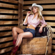 Young, happy and sexy cowgirl — Stock Photo #42519975