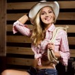 Young, happy and sexy cowgirl — Stock Photo #42520725