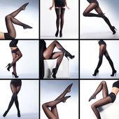 Set of sexy legs — Stock Photo