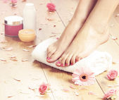 Spa compositions of sexy female legs — Stock Photo