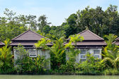 Typical Asian house on the waterfront — Stock Photo