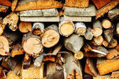 Stacked wood timber for construction — Stock Photo