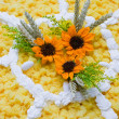 Sponge daisy cake - Stockfoto