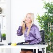 A beautiful young woman in an Office talking on the phone — Stock Photo