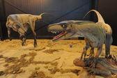 Dinosaurs at Valle della luna — Stock Photo