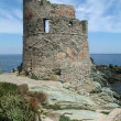 Genoese tower near Erbalunga — Stock Photo