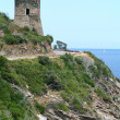 Genovese, tower of Osse on Corsica island — Stock Photo