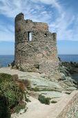 Genoese tower near Erbalunga — Stock Photo