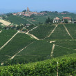 Vineyards of Serralunga d'Alba in italians Langhe - Stock Photo