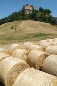 Castle Rossena on Emilia Romania — Stock Photo