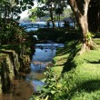 River at Ste. Rose at Reunion island - Stock Photo