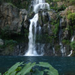Les Cormorans waterfall on Reunion island - Stock Photo