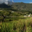 Mountain lake at Cilaos on Reunion island - Stock Photo