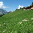 Alpine houses near Engelberg on Switzerland — Stock Photo #17413217
