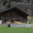 Swiss wooden house with domestic animals at Engelberg — Stock Photo