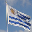 Stock Photo: Uruguay, flag
