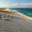 Stock Photo: Deleishbeach on Socotrisland Unesco world heritage