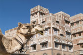 A Dromedary near the tower houses in old Sana — Stock Photo