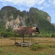 Rural landscape near Vang Vieng on Laos — Stock fotografie