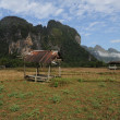 Rural landscape near Vang Vieng on Laos - Stock Photo