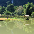 Rural landscape near Vang Vieng on Laos — Foto Stock