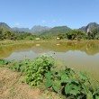 Rural landscape near Vang Vieng on Laos — Stock Photo #18515875
