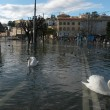 Inundation of lake Lugano - Stock Photo