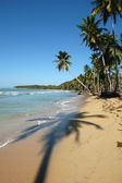 Dominican Republic, Las Galeras playa Bonita — Stock Photo