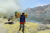 Working on a sulfur nuggets atop a volcano in Indonesia — Stock Photo
