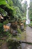 Gitgit Waterfall, Bali — Stock Photo