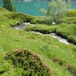 majestätische Bergsee in Schweizer Alpen — Stockfoto