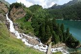 Swiss Alps Mountain Stream — Stock Photo