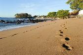 ślad na plaży — Zdjęcie stockowe