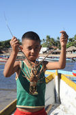 Little Lobster fisherman — Stock Photo
